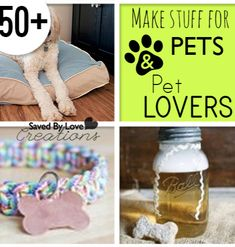 DIY Things to Make for Pets and Pet Lovers — Saved By Love Creations
