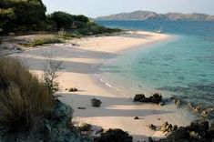 Afbeeldingsresultaat voor flores island indonesia