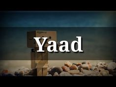 "Best Heart 💖 Touching Lines Shayari Video ""Yaad"" Love Songs Hindi, Love Song Quotes, Song Hindi, Whatsapp Emotional Status, Love Status Whatsapp, Good Morning Inspirational Quotes, Morning Quotes, New Whatsapp Video Download, Silent Love"