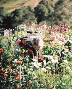Imagem de flowers, girl, and nature