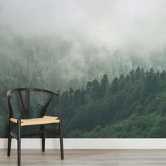 misty-valley-forests-square-wall-murals