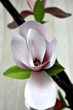 Paper Magnolia Blossom by all things paper, via Flickr