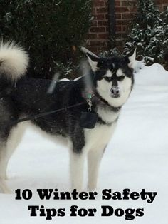 10 Winter Safety Tip