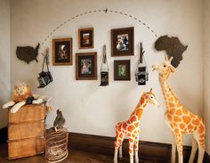 Safari themed kid;s room features USA silhouette clock and Africa silhouette clock flanking framed safari photographs as well as stuffed toy giraffes and lion.