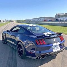 Ford Mustang Classic, Ford Mustang Shelby Gt500, 2015 Ford Mustang, Ford Shelby, Ford Classic Cars, Mustang Cars, Ford Mustangs, Street Racing Cars, Ford Lincoln Mercury