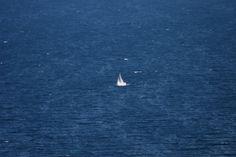 Barca #manerba #lagodigarda #garda #gardalake