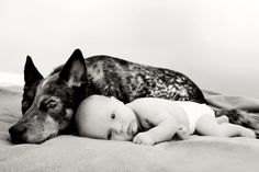 Nothing like the love of a dog.  Thumper and Baby boy ACE!