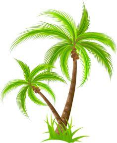 Palm PNG Clip Art Best WEB Clipart