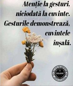 Motto, Haha, Floral, Quotes, Characters, True Words, Quotations, Ha Ha, Flowers