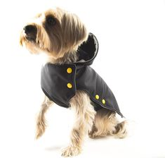 These coats have a street style edge, with addition of a hood! Dog Sweaters, Dog Coats, Dog Accessories, Cool Style, Bob, Street Style, Modern, How To Wear, Design