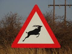 Road signs in Africa #travel #travel2next #adventure