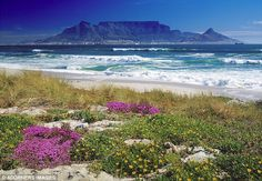 Stunning: Table Mountain looms over Cape Town and the Atlantic beaches beautiful view across the ocean. Table Mountain Cape Town, South Afrika, Travel Advisory, Atlantic Beach, Cape Town South Africa, Cultural Experience, Famous Places, Africa Travel, Wonders Of The World