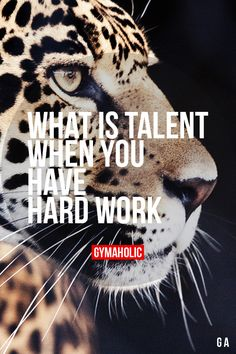 What Is Talent When You Have Hard Work