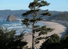 Cannon Beach, OR - The beach I always return to every year when I visit the Pacific Northwest.  It is heaven for me!