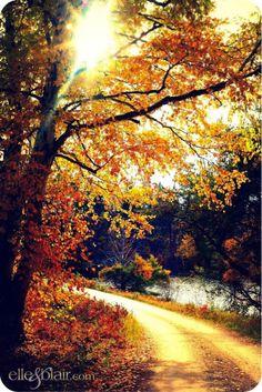 Elle Fowler's Autumn wallpaper #Fall