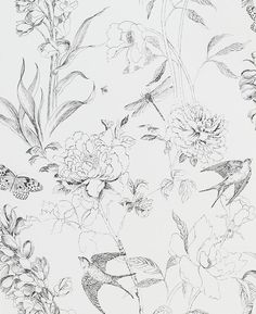 Designers Guild Jardin des Plantes Sibylla Garden Paste the Wall Wallpaper, Black / White – White and Black Wallpaper Farmhouse Wallpaper, Wallpaper In Dining Room, Living Room Wallpaper Accent Wall, Wall Paper Bathroom, Half Bathroom Wallpaper, Powder Room Wallpaper, Black And White Wallpaper, Black White, Bird Wallpaper