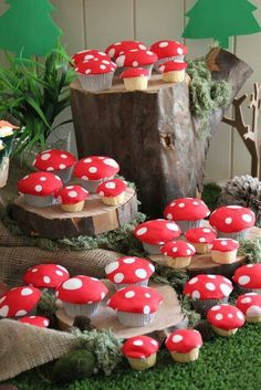 Sun mushroom cupcakes