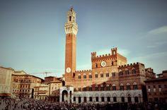Piazza del Campo (Siena - Italy)