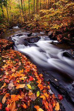 Oregon Brook Autumn, Vermont.  Photo: Joseph Rossbach via Flickr