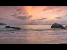 The Waves - Elisa