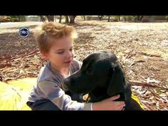 Is it appropriate to have a dog with a child with autism?