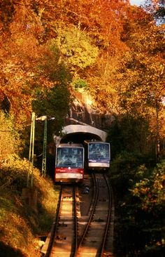 Bergen Funicular - must do