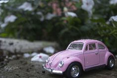 Frog in The Rainy Day - 1967 Volkswagen Classical Diecast 1:32