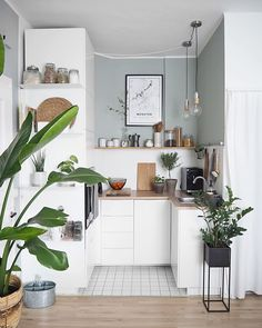The cutest little kitchen space 🌿(Image: Small Modern Kitchens, Home Kitchens, Modern Kitchen Decor, Scandinavian Kitchen, Modern Homes, Apartment Kitchen, Kitchen Interior, Apartment Living, Living Rooms