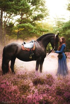 Gorgeous horse standing in the misty morning meadow of pink flowers with his girl in a long blue dress.  Beautiful pic! Romantic horse photography!