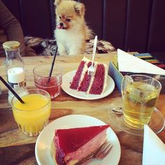 Red Velvet cake at De Drie Graefjes. | 22 Things Everyone Needs To Eat In Amsterdam
