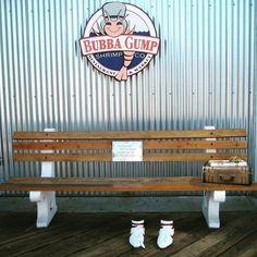 Bubba Gumb #bubbagump #shrimp #forrestgump #santamonica #seafood #bubba #forestgump #california #restaurant #santamonicapier #bubbagumpshrimp #gump #losangeles #la #pier #bubbagumpshrimpco