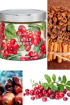 PartyLite Candles Fragrances Winter Signature Scents - Winter Berries