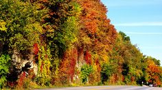 Twain's Great River Road, Mississippi to Hannibal, MO : America's Best Fall Foliage Road Trips : TravelChannel.com