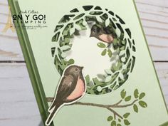 Hand Made Greeting Cards, Making Greeting Cards, Fancy Fold Cards, Folded Cards, Stamping Up Cards, Rubber Stamping, Bird Theme, Bird On Branch, Bird Cards