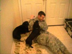 18 Tear-Jerking Moments Of Soldiers Reuniting With Their Dogs