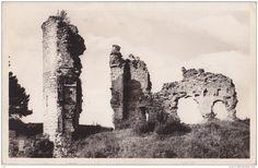 Lons le Saunier - Lons le Saunier (39) - Environs - Château de Châlon - Vue générale des Ruines