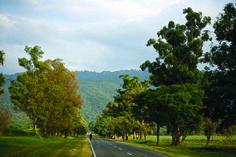 Imagen de la RN 38 que se dirige a San Pablo, #Tucuman. ¿Cuál es tu rincón favorito en esta provincia? #Rutas #Turismo #Argentina #NorteArgentino #ViajesGuíasYPF #GuíasYPF #Viajes #YPF