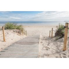 Beach Path Canvas by Art Illusions. Get it now or find more All Wall Art at Temple & Webster. Triptych Wall Art, Wall Canvas, Wall Art Sets, Wall Art Prints, Paris Canvas, Garden Frame, Canvas Online, Coastal Wall Art, Floating In Water