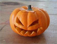 3 Gut Halloween Kürbis Bilder Vorlage  Vorräte Pumpkin Carving, Resume, Teen Birthday, Pumpkin Carvings, Cv Design