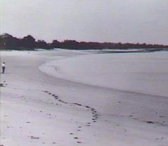 Fannie Bay  1930.