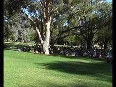 Nicola Milan sings at Sunset at Subi in Perth Western Australia. www.nicolamilan.com #jazzsinger #romance #jazz