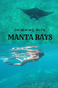 Snorkeling with Manta rays at Manta point in Nusa Penida, Indonesia was surely a once in a lifetime experience. Read about my experience, costs, where to book and more by clicking on the pin.  Manta rays l Manta Point l Snorkeling in Indonesia l Best snorkeling spots in Asia