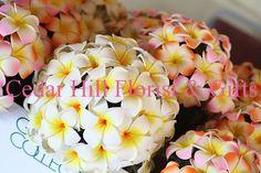 Plumeria wedding bouquets Bridal bouquet is white and bridesmaids are pink plumeria