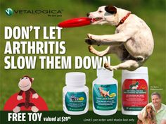 Arthritis prevention with a free Gift! Vetalogica Joint Support & Joint Formula. Limited 1 per order while stocks last. (June 2013)