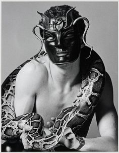 Robert Mapplethorpe, Snakeman, 1981, photographie sur papier, 441 x 342 mm © Robert Mapplethorpe