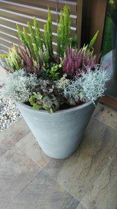 Cveti - Terrasse ideen - Garden Care, Garden Design and Gardening Supplies Balcony Planters, Garden Planters, Planter Pots, Small Gardens, Outdoor Gardens, Fairy Gardens, Cottage Gardens, Big Flowers, Flowers Garden