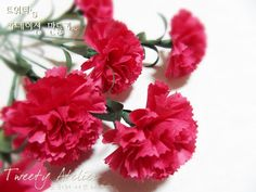 Paper Carnations - great tute!