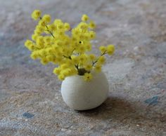 Bringing the outdoors inside - Cecile Daladier Small Mimosa Flower Mimosas, Indoor Flowers, Indoor Plants, Flower Vases, Flower Arrangements, Flower Diy, Rustic Home Design, Cecile, Flower Quotes