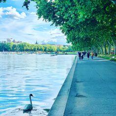 Découvrez une multitude d'activités à faire Annecy Prison, Excursion, Le Palais, Sidewalk, Lake Annecy, Side Walkway, Walkway, Walkways, Pavement