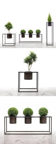 Idéias de paisagem 3D para trazer minimalismo ao ambiente. Referência. @mlabdecor